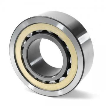 RSL185022 INA Cylindrical Roller Bearing